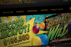 Pala Online Casino In New Jersey Pays Out A 'Wild' Six-Figure Jackpot