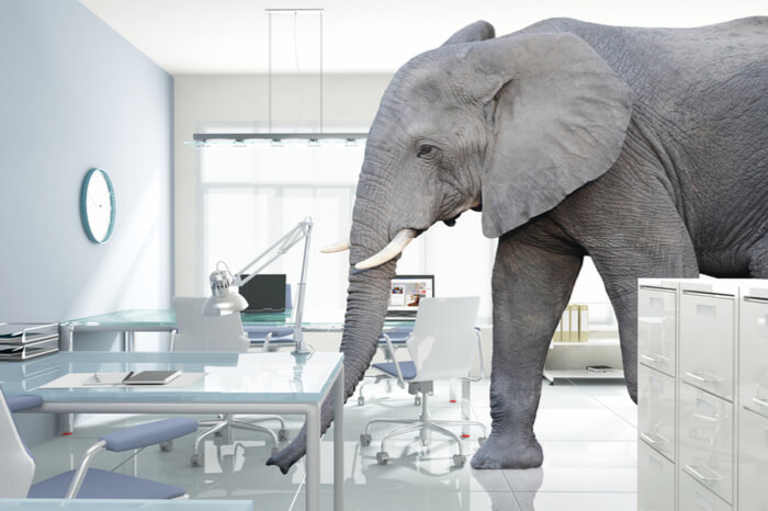 Imagine March Madness At Atlantic City Casinos Without The Elephant In The Room