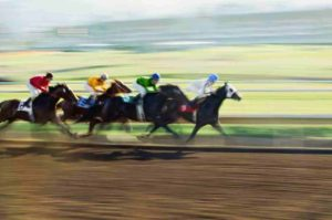 And They're Off: Major Sports Might Be Shut Down But Horses Are Still Running