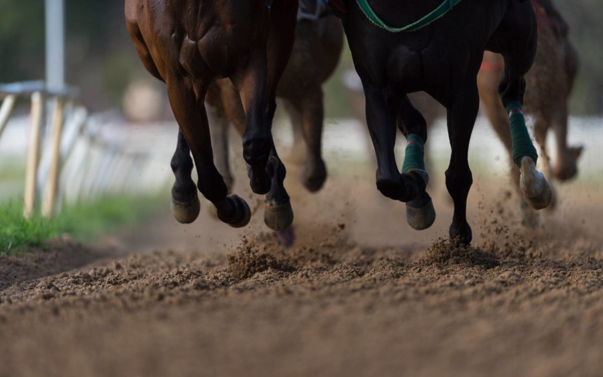 Horse Betting: Churchill Downs Gets An Online Boost, Other Tracks Pick Up The Pace