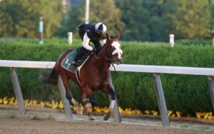 The Last Shall Be First: Belmont Betting In New Jersey Looks A Bit Different This Year