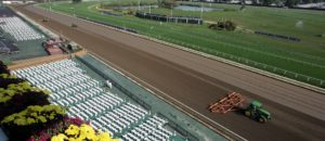 Thanks To Gov. Murphy's Signature, Fixed-Odds Wagering Nearing Monmouth Park Horse Betting Starting Gates